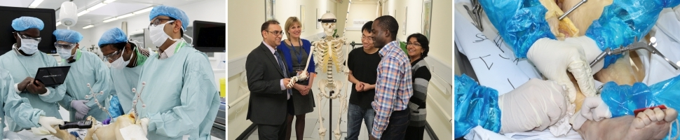 Why Study Orthopaedic Surgery at Dundee?