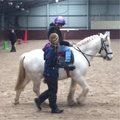 Hippotherapy & Cerebral Palsy Research