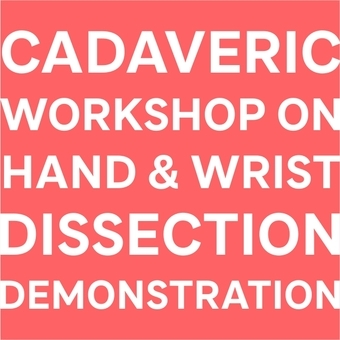 Hand & Wrist Dissection Demonstration and Workshop using Thiel Cadavers