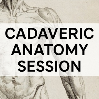 Cadaveric Anatomy Session - MCh (Orth) Dundee